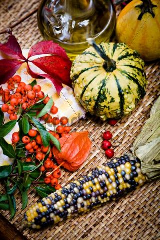 Gourds, corn cob, lantern flowers or physalis, red berries