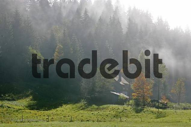 a house and a barn morning fog is lifted by the sun in the Brückler valley near the village of Turnau Styria Austria