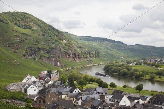 River Moselle and the vineyards around Uerzig, Rhineland-Palatinate, Germany, Europe, PublicGround