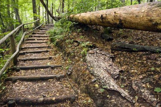 Hiking trail, Ojcowski National Park, Poland, Europe