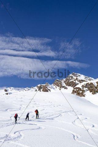 Ski hiker during the ascent of Staudenberg Joechl ridge in Ridnaun above Schneeberg, Sterzing, Staudenberg Joechl at back, South Tyrol, Italy, Europe