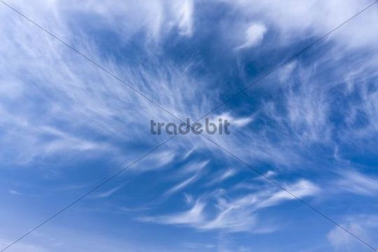 Blue sky with cirrostratus clouds