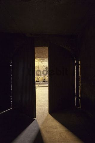 Looking through an open door into a wine cellar