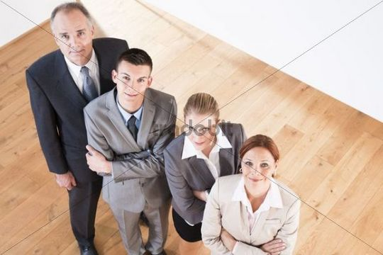 Businesspeople, group picture from above