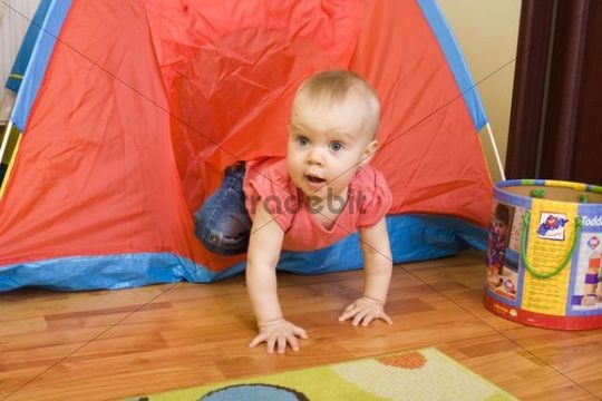 Baby, 1 year, playing in a play tent