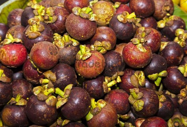 Purple Mangosteen (Garcinia mangostana), market in the market halls, Singaraja, North Bali, Bali, Indonesia, Southeast Asia, Asia