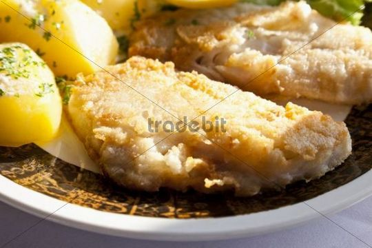 Redfish fillet in batter with boiled potatoes