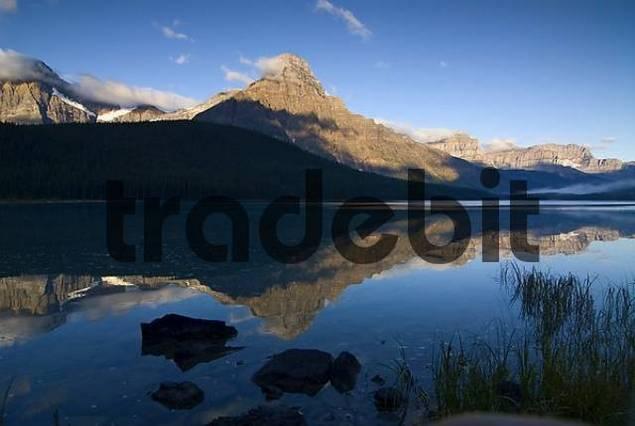 morning reflection of Mount Chephren in Lower Waterfowl Lake, Waputik Mountains, Banff National Park, Alberta, Canada