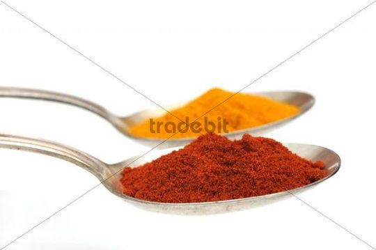 Curry and paprika powder on an old spoon