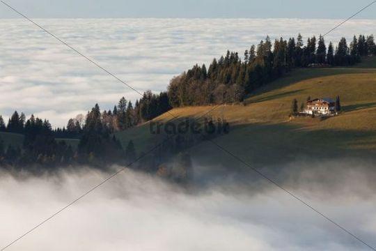 View from Mt Hirschberg with alpine hut and chapel near Mt Pfaender in autumn during high fog, Austria, Europe, PublicGround