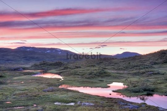 Nautåa, Nautaa river, Skarvan and Roltdalen National Park, Skarvan og Roltdalen, Sør-Trøndelag, Sor-Trondelag county, Norway, Scandinavia, Europe
