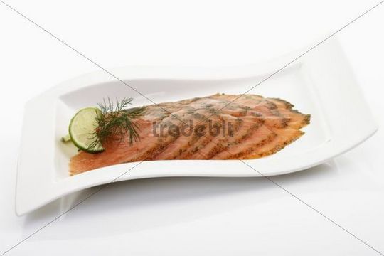 Gravlax, salmon, smoked slices with dill on white porcelain plate -...