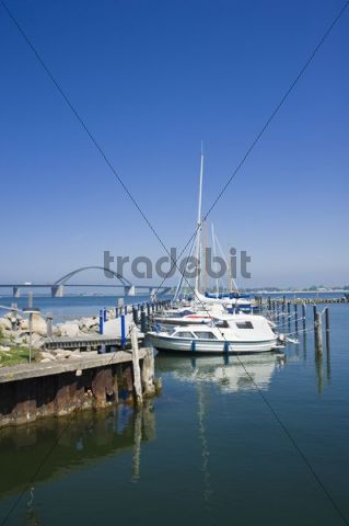 Marina with Fehmarn Sound Bridge at Grossenbroderfaehre, Grossenbrode, Baltic Sea, Schleswig-Holstein, Germany, Europe