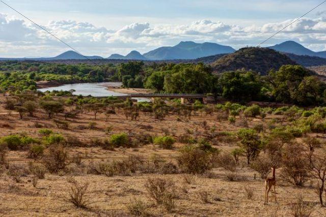 Ng´iro Bridge crossing the Ewaso Uaso Nyiro River in Samburu National Reserve, Kenya, East Africa, Africa, PublicGround