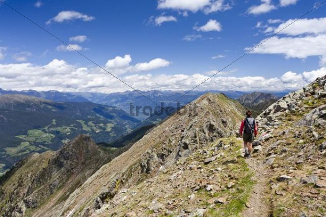 Hiker on the ridge from the Ultener Hochwart to Schoengrubspitz Mountain, Ultental, Ulten Valley, looking towards Schoengrubspitz Mountain, Ulten in spring, Alto Adige, Italy, Europe