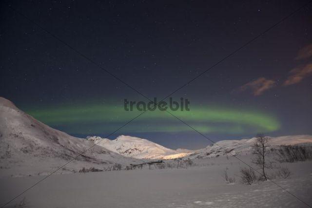 Northern Lights over the Kattfjord mountain pass, Kvaløya, Tromsø, Tromsoe, Norway, Europe