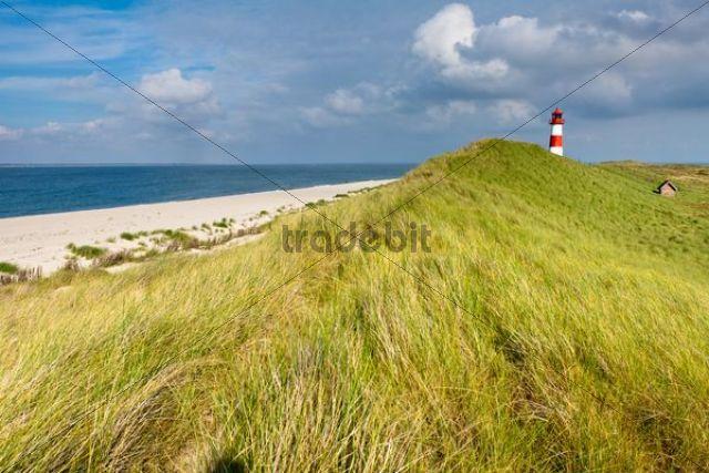 Lighthouse of List Ost on the Sylt peninsula of Ellenbogen, Sylt, North Frisia, Schleswig-Holstein, Germany, Europe, PublicGround