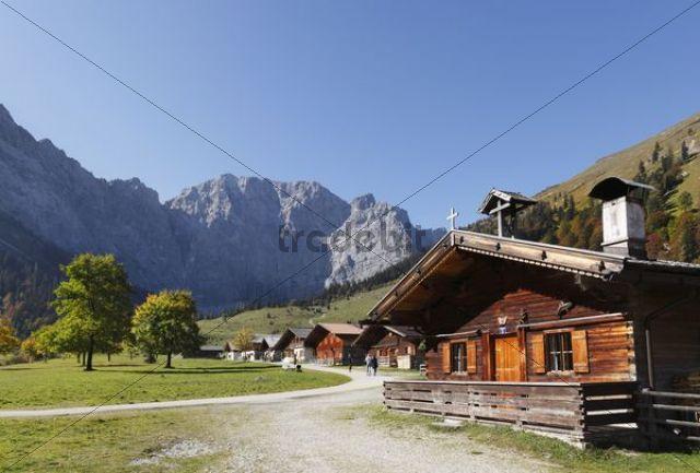 Eng-Alm, mountain pasture, Grosser Ahornboden, pasture with maple trees, Risstal, Karwendel Mountains, Tyrol, Austria, Europe, PublicGround