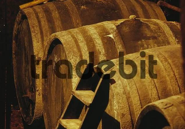 Wine barrel, Rust, Burgenland, Austria