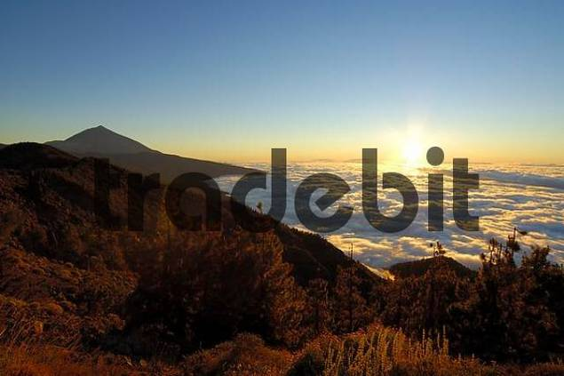Teide national park, view onto a sea of clouds, Tenerife, Canary Islands, Spain