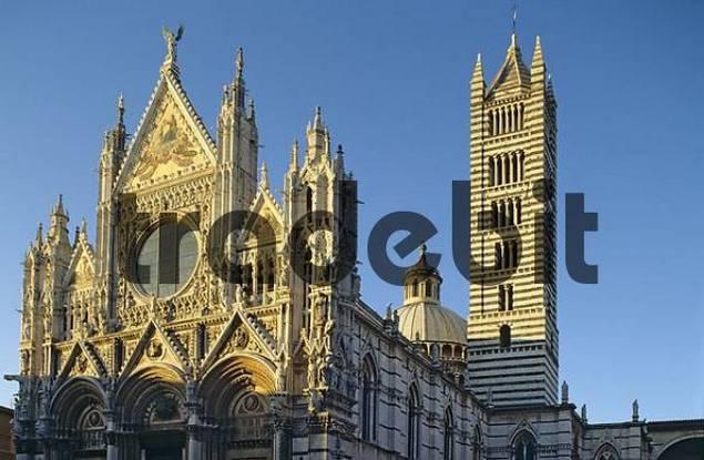 Dom von Siena im Abendlicht Toskana Italien