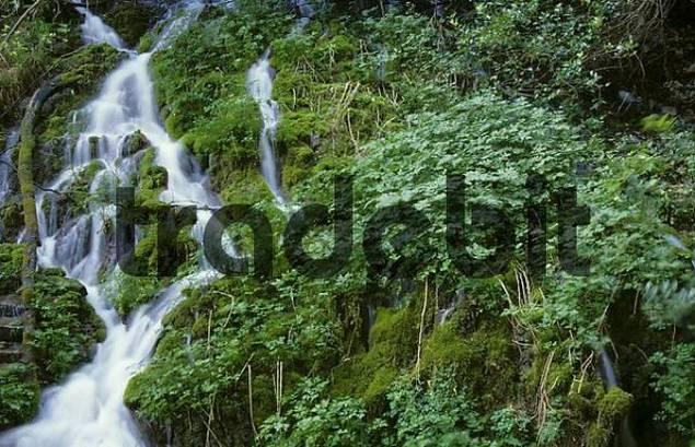 small waterfall in ravine of Cascata Varone near Riva Italy