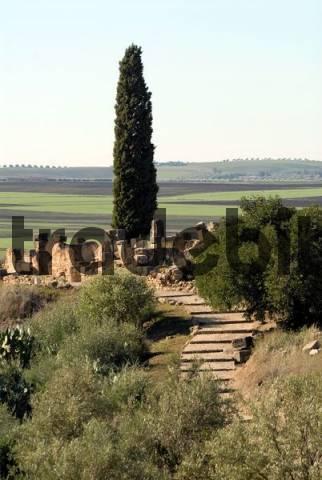 Excavation of the ancient Roman city Volubilis, Morocco, Africa