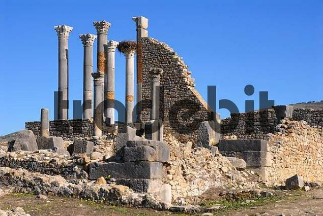 Capitol of the ancient Roman city Volubilis, Morocco, Africa