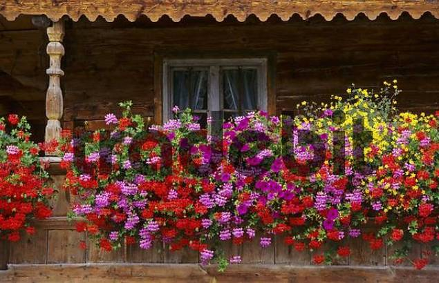 balcony with flowers on farmhouse in Ascholding Bavaria Germany