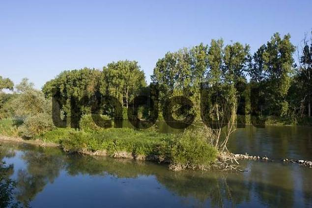 flood plain Isar river near Plattling Lower Bavaria Germany