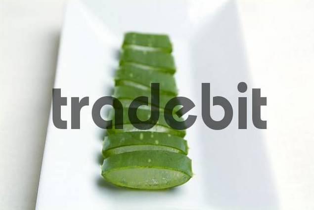 Aloe Vera in slices