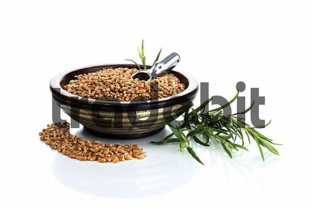 Wooden bowl with wheat