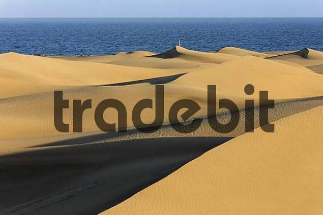 sand dunes, Maspalomas, Playa del Ingles, Gran Canaria, Spain