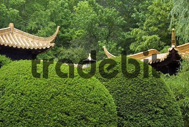 chinese garden munich bavaria germany download architecture. Black Bedroom Furniture Sets. Home Design Ideas