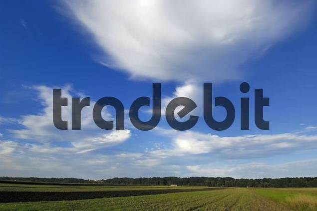 Cloud formation over field