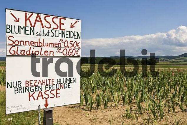 facebook video orgien gratis Haßfurt(Bavaria)
