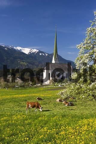 Wiesing near Jenbach Tyrol Austria