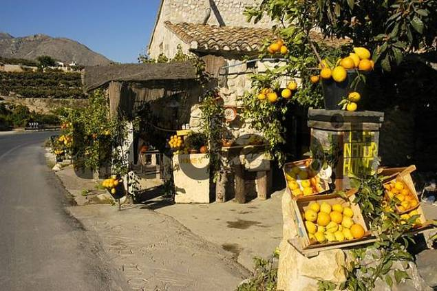 sales stand for oranges, honey and other regional products, Altea, Costa Blanca, Spain, Speciality, food, nationaltypically