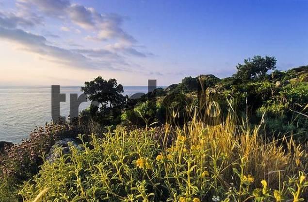 coast near Agios Gallini, Crete, Greece