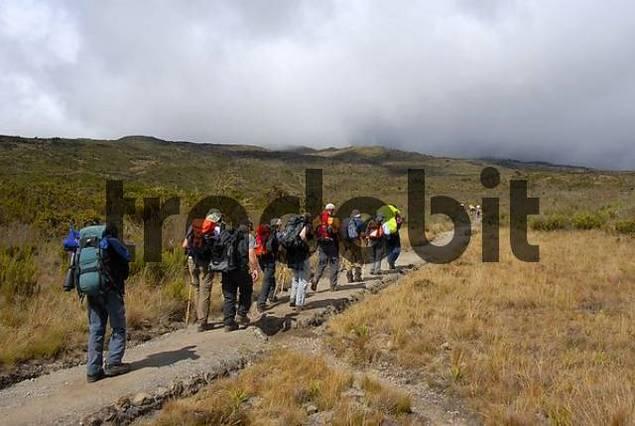 Group of trekkers on Rongai Route Kilimanjaro Tanzania