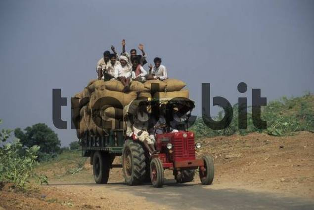 indian farm-worker on tractor, Ranthambore national park ...