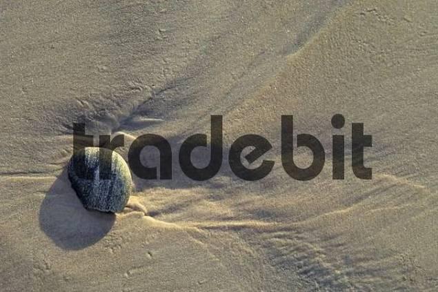 stone on the sand of Ocean Beach near Strahan Tasmania Australia