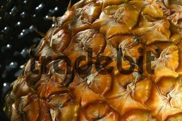 makro shot of a pineapples skin