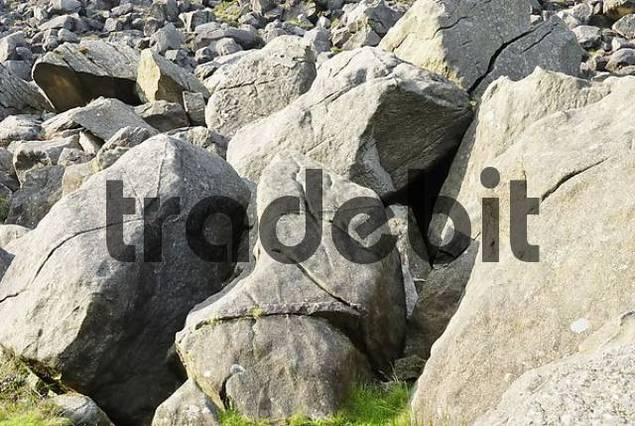 Gigantic granite rocks, relicts of a rock slide at lake Glendalough, Co Wicklow, Ireland