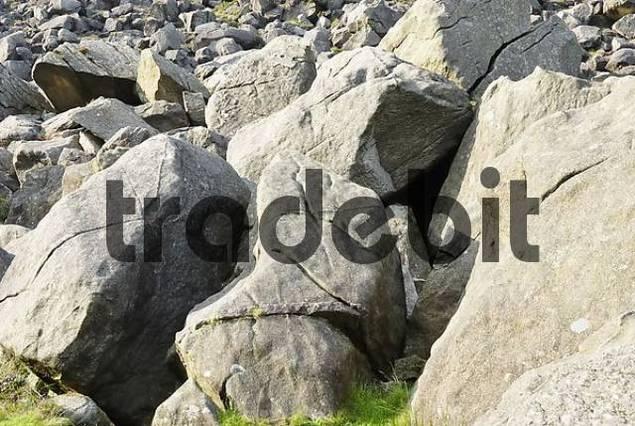 Gigantic granite rocks, relicts of a rock slide at lake Glendalough, Co Wicklow, Ireland