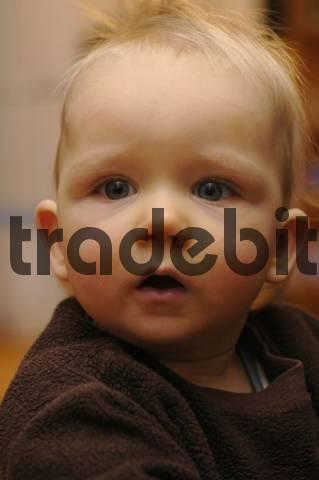 portrait little boy, portrait baby