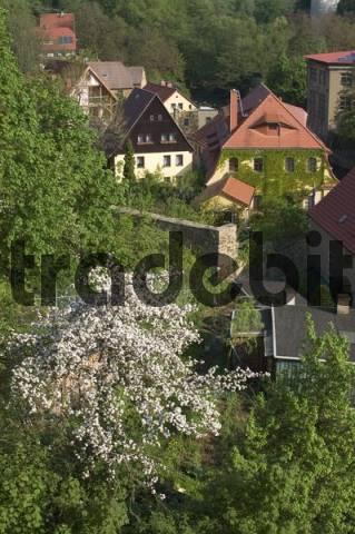 Bautzen Saxonia Germany houses near the river Spree
