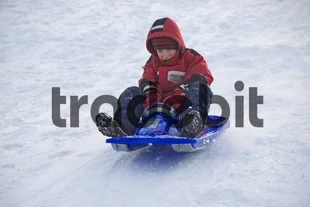 a child is sledging down a hilll