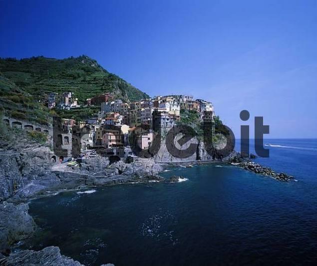 Manarola Cinque Terre - Liguria - Italy