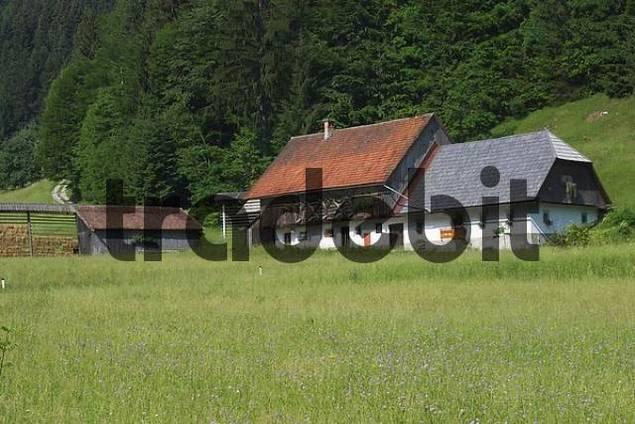 Farmhouse - Zatrnik - Pokljuka - Triglav National Park - Slovenia